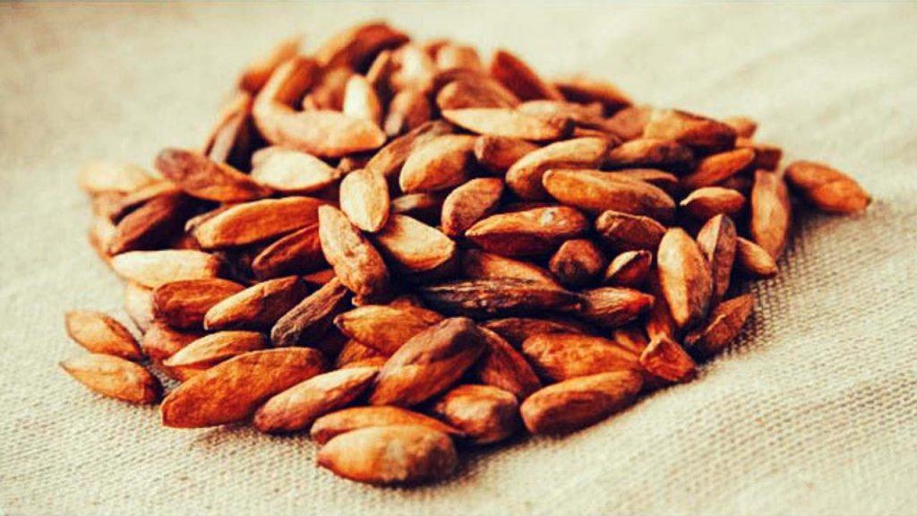 Mứt hạt bàng đặc sản Côn Đảo